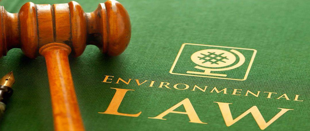 Resolución N°470/2020 del Ministerio de Ambiente y Desarrollo Sostenible