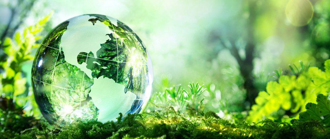 Resolución N°239/2020 del Ministerio de Ambiente y Desarrollo Sostenible de la Nación